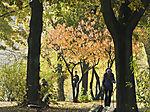 Herbstspaziergang an der Alster
