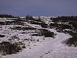 Winter im Dovrefjell