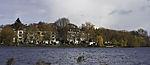 swarm Tufted Ducks over lake Alster, Aythya fuligula