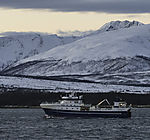 Fischdampfer Atlantic Viking