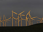 windpark in evening light