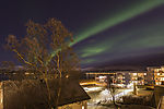 northern lights over Xmas tree