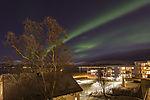 Nordlicht über Weihnachtsbaum