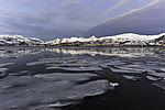 drift ice in fjord in northern Norway
