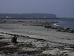 Grey Seals and tourists on beach, Halichoerus grypus