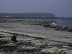 Kegelrobben und Touristen am Strand, Halichoerus grypus
