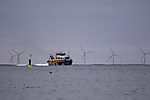 windpark and catamaran near island Helgoland