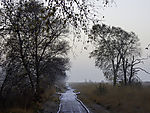 hiking trail at lake Ewiges Meer in autum
