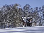 Hütte im Winterwald