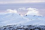 winter on mount Lille Blaamannen