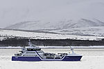 fish carrier Ro Arctic