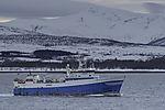 russian trawler Mark Liubovskii