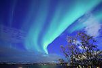 spring aurora