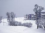 snow winter in Tromso