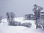 Schneewinter in Tromsö