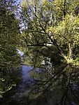 Frühlingsspiegelung im Isebek-Kanal