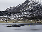 salmon farm in Langöysundet