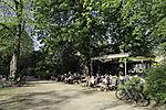cafe in spring