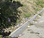 Plastikabfall am Straßenrand