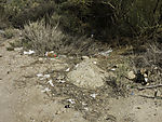 waste at road sid