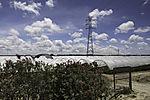 greenhouses of plastics  in Dehesa de Abajo