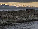 Stockfisch in Svolvär im Abendlicht