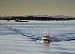 Fischerboot und Lachsfarm