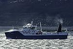 Trawler Nordtind und Möwen