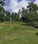 Wildblumenwiese neben gemähtem Rasen