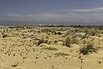beach near Huelva