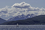sailing summer in northern Norway