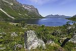 summer at Grötfjorden