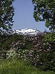 summer in Tromso