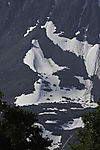 Snow Grouse on Mount Bentsjordtinden