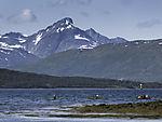 Meerespaddler bei Tromsö