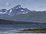 sea paddlers near Tromso