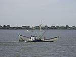 fishing boat on Elbe river
