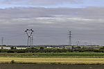 Stork nests on pylons, Ciconia ciconia