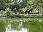 horse-drawn carriage at pond