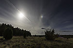 sun and sundog over Luneburg Heath