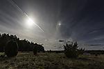 Sonne und Nebensonne über Lüneburger Heide