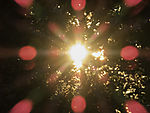 Morgensonne im Baum mit Reflexen