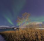 herbstliches Nordlicht