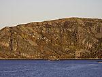 Herbstwald an norwegischer Küste