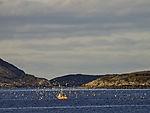Fischerboot und Möwen
