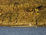 Lachsfarm im Melöyfjorden