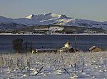 cold november say in Tromso