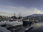 fishing boats in Tromso