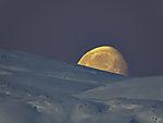 Monduntergang über Kvalöya