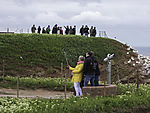 tourists on birdcliff on island Helgoland